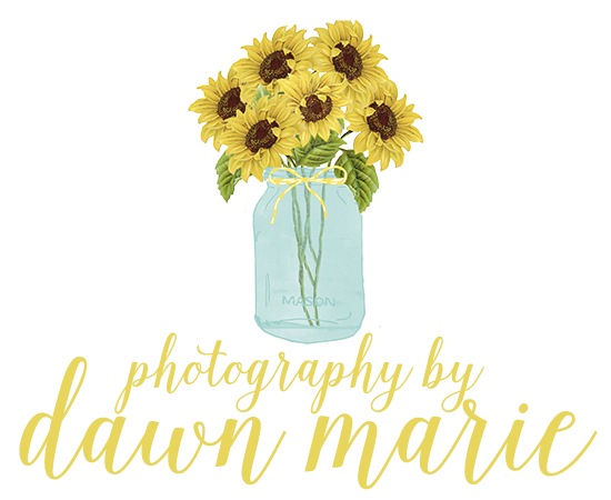 Photography by Dawn Marie logo